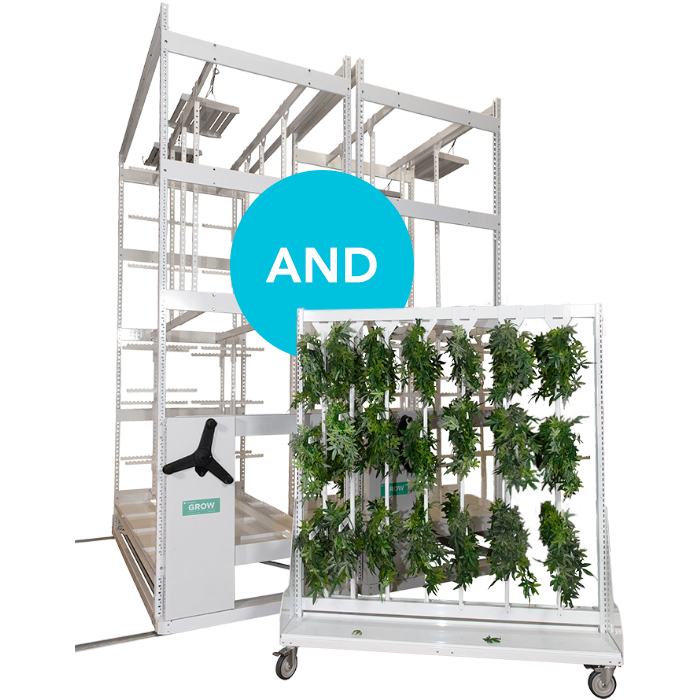 best cannabis drying system