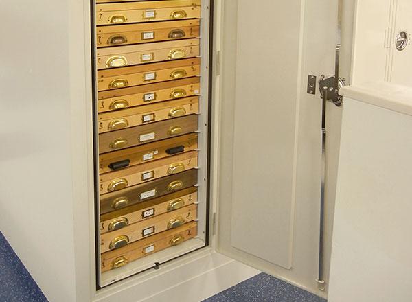 entomology museum cabinet