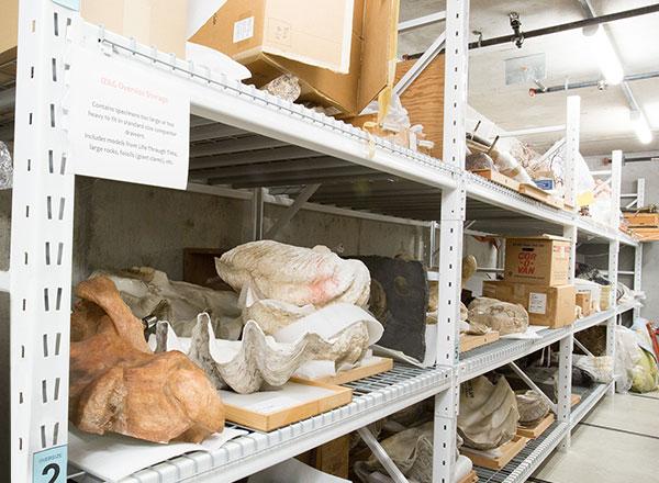 widespan shelving heavy duty versatile storage